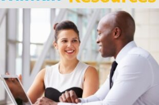 Online Masters In Human Resources